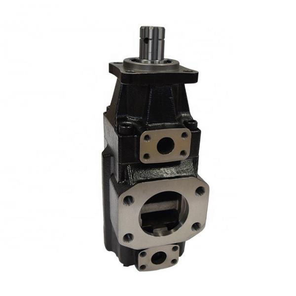 DENISON T6ED-052-038-1R00-C100 vane pump #2 image
