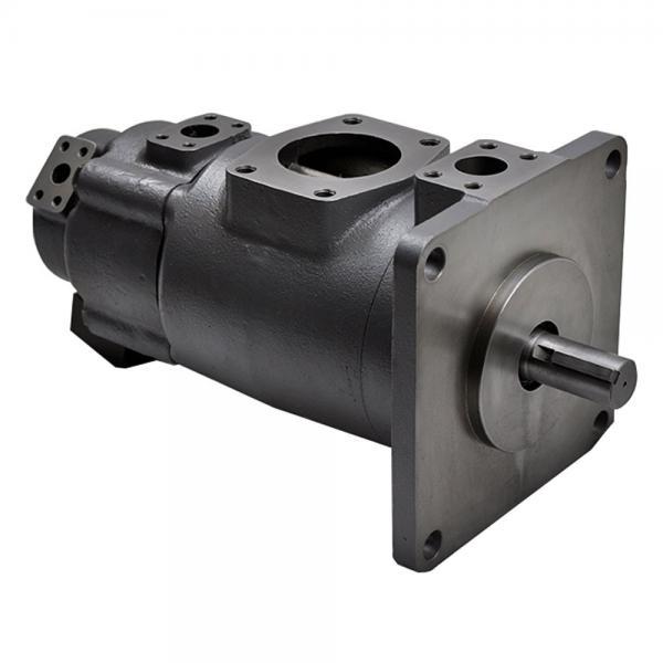 Yuken PV2R14-25-136-F-RAAA-31 Double Vane pump #1 image