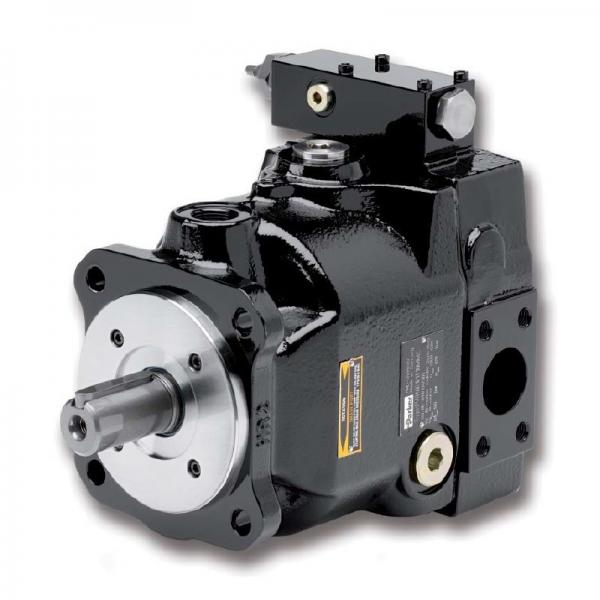 PAKER F11-010-MV-SV-K-000-000-0 Piston Pump #1 image